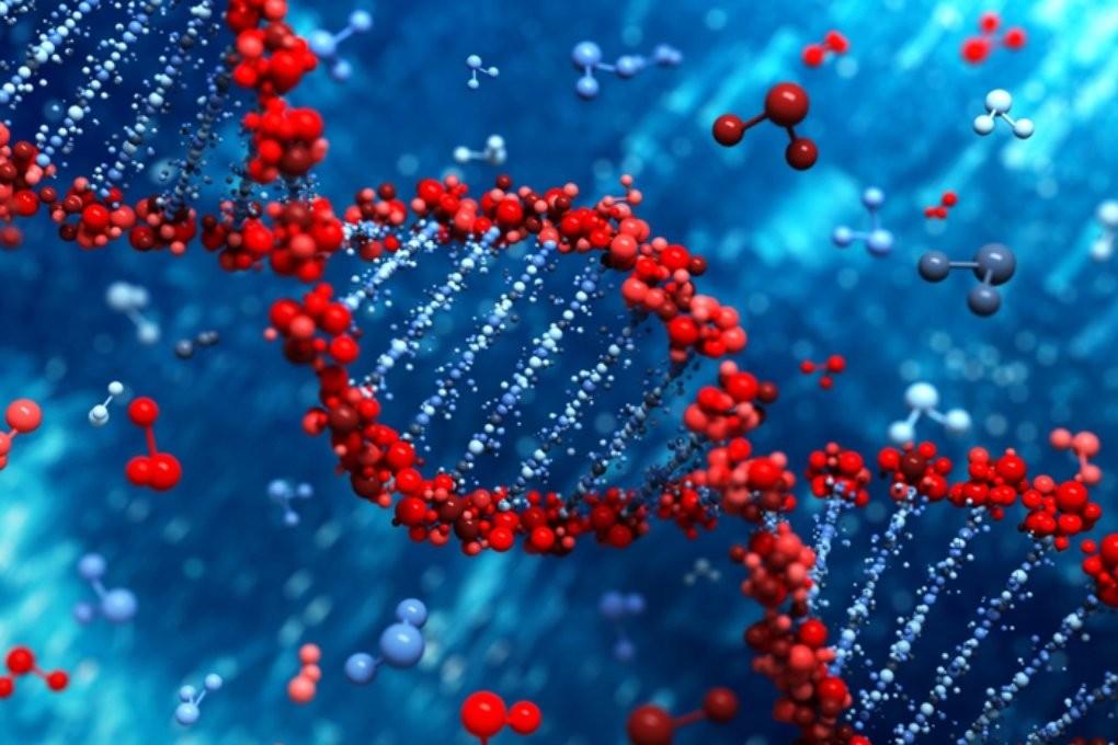 Американские ученые готовы сделать ГМО-людей