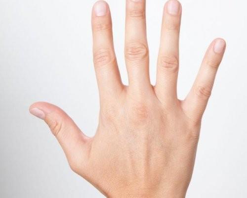 Пальцы рук скажут очеловеке все— русские ученые
