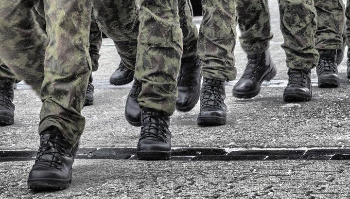 Нетрезвых чешских солдат вЛитве довелось «успокаивать» электрошоком