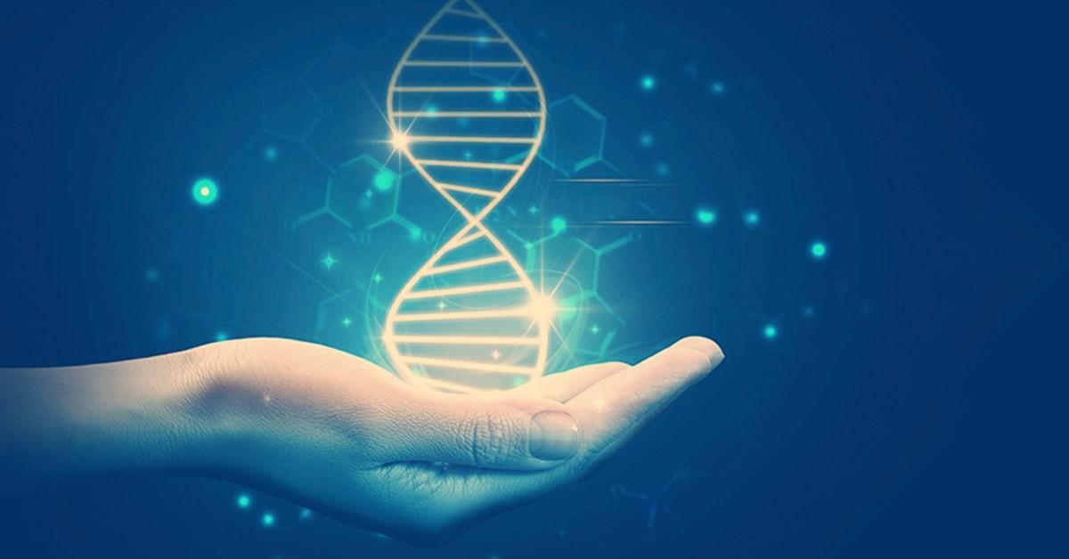 Ученые отыскали гены, выбирающие для копирования ДНК одного изродителей