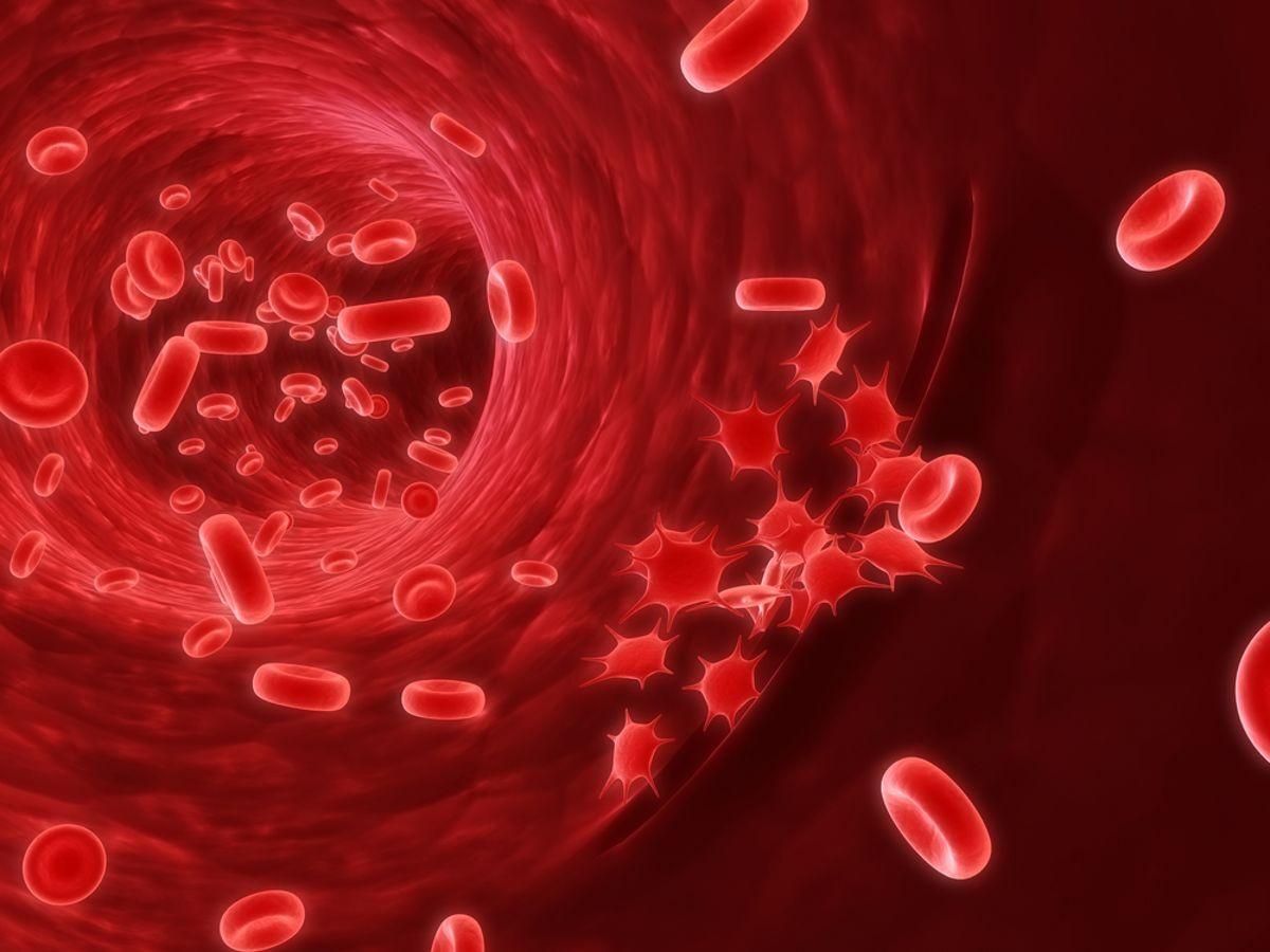 Ученые поведали, как омолаживать кровь
