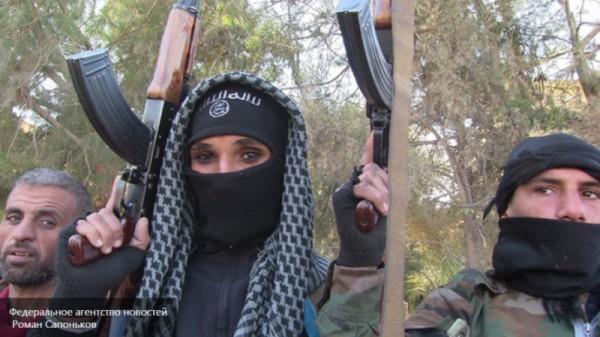 Предотвращенный во Франции теракт находился в финальной стадии подготовки