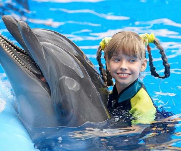 В Новосибирске можно будет поплавать с дельфинами