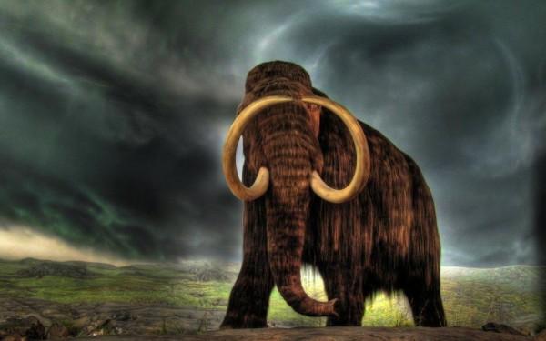 Ученые намерены вернуть мамонтов на Землю через два года