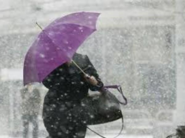 Москвичей предупредили о сильном ветре в воскресенье