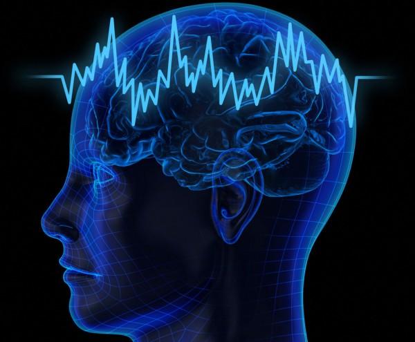 Доказано, что человеческий мозг может вырабатывать фруктозу