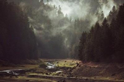 Ученые: Неблагоприятные погодные явления вызваны атмосферными реками