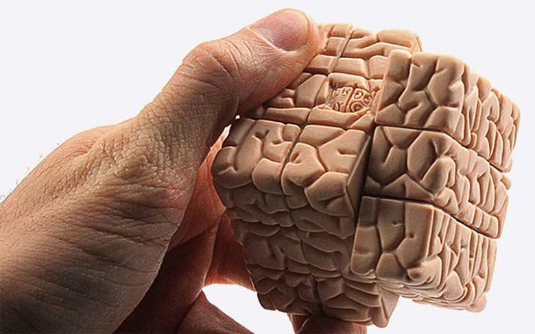Ученые: Залюбовь и стремление отвечает один участок мозга