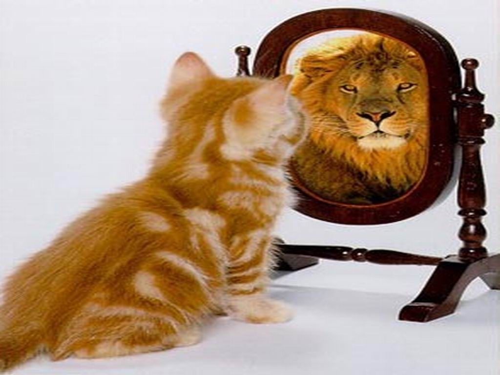 Ученые дали совет, как поднять самооценку