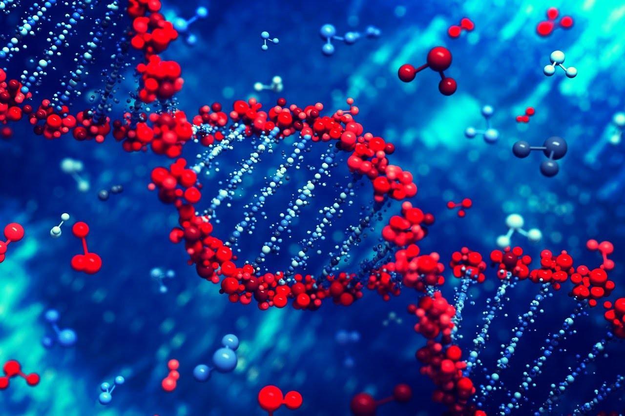 ДНК-машина несомненно поможет диагностировать рак