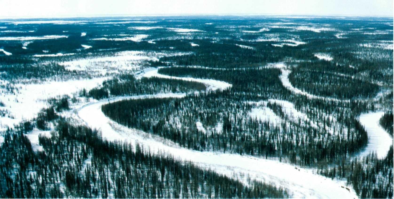 Учёные восстановят условия Ледникового периода в Сибири