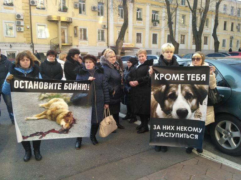 Намитинге зоозащитников в российской столице произошла потасовка
