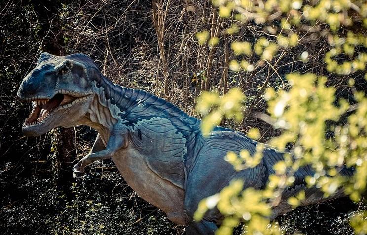 Итальянские археологи восстановили имидж динозавра поотпечатку его следа