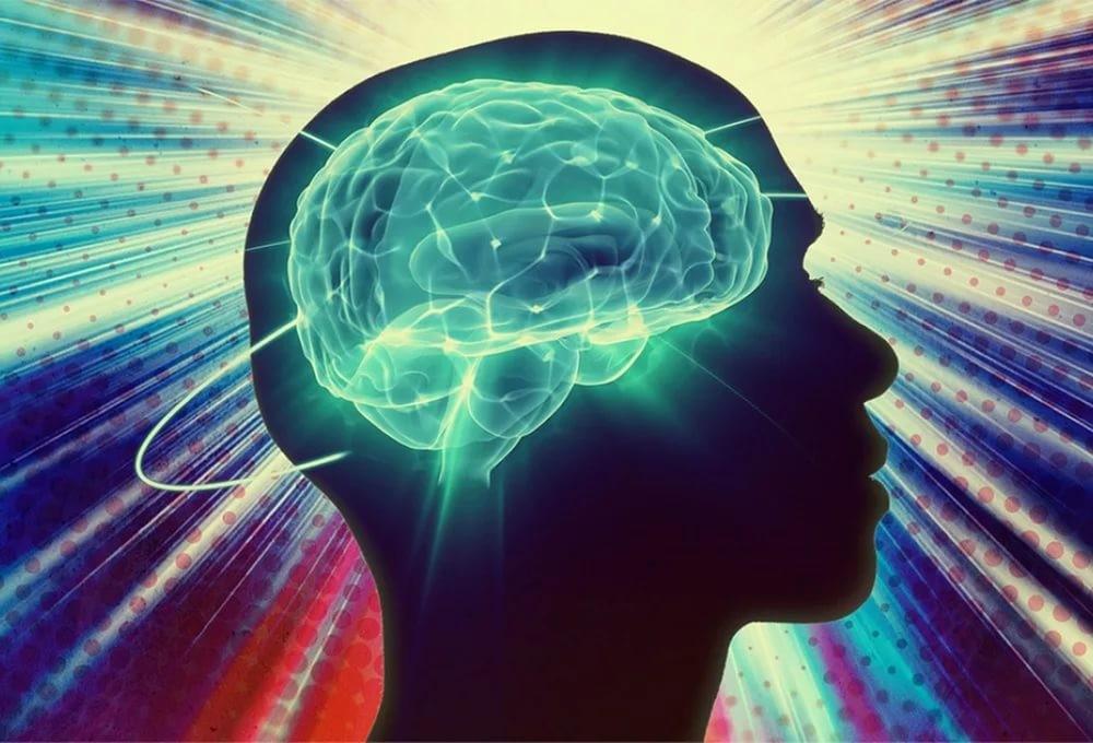 Мозг людей слишним весом подвержен усыханию— Ученые