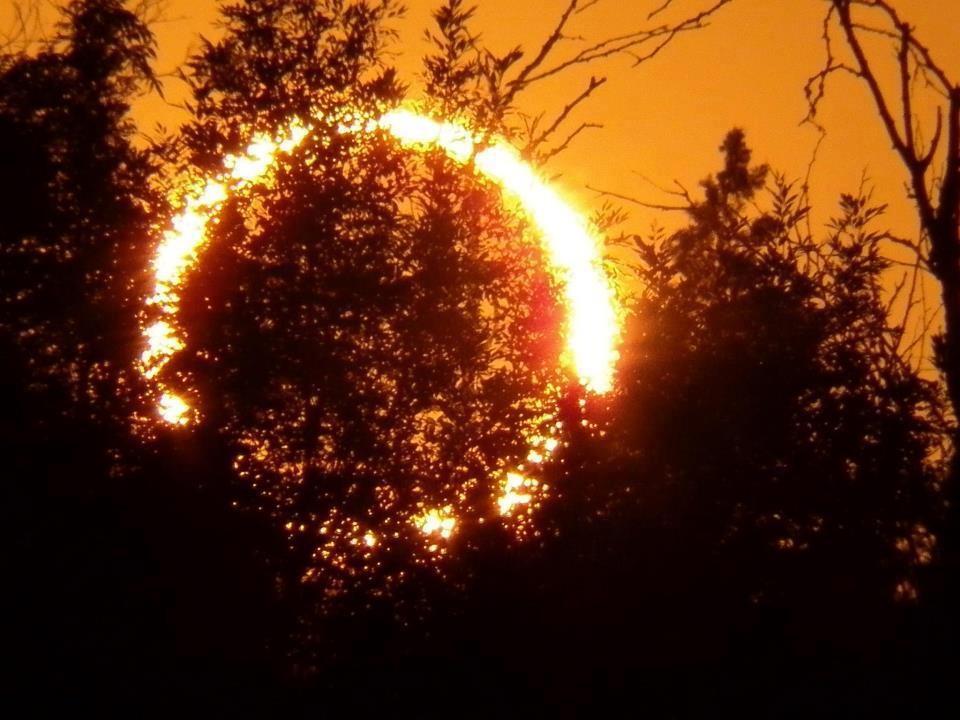 Граждане  Перми смогут понаблюдать заатмосферой Венеры
