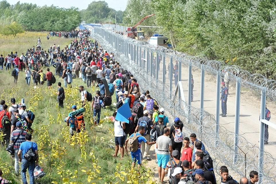 Венгрия открыла награнице новую военную базу для борьбы спотоком мигрантов