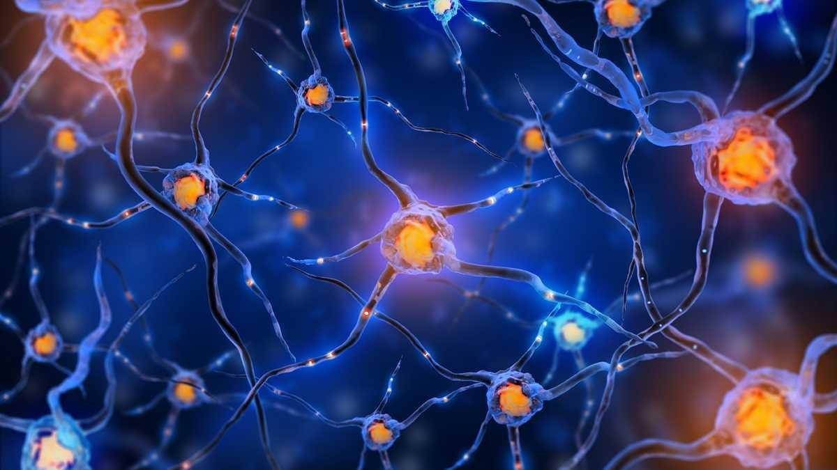 Выявлен источник неизлечимых заболеваний мозга