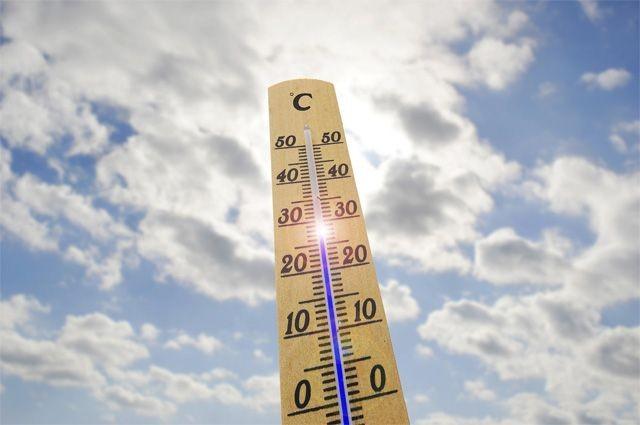 Ученые: при повышении земной температуры на1,5 градуса Цельсия население Земли погибнет