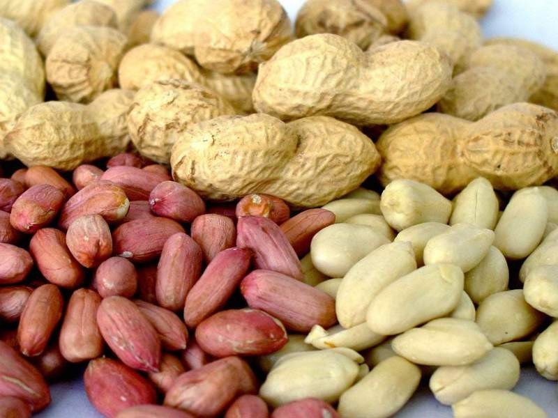 Исследование: арахис понижает риск сердечно-сосудистых заболеваний