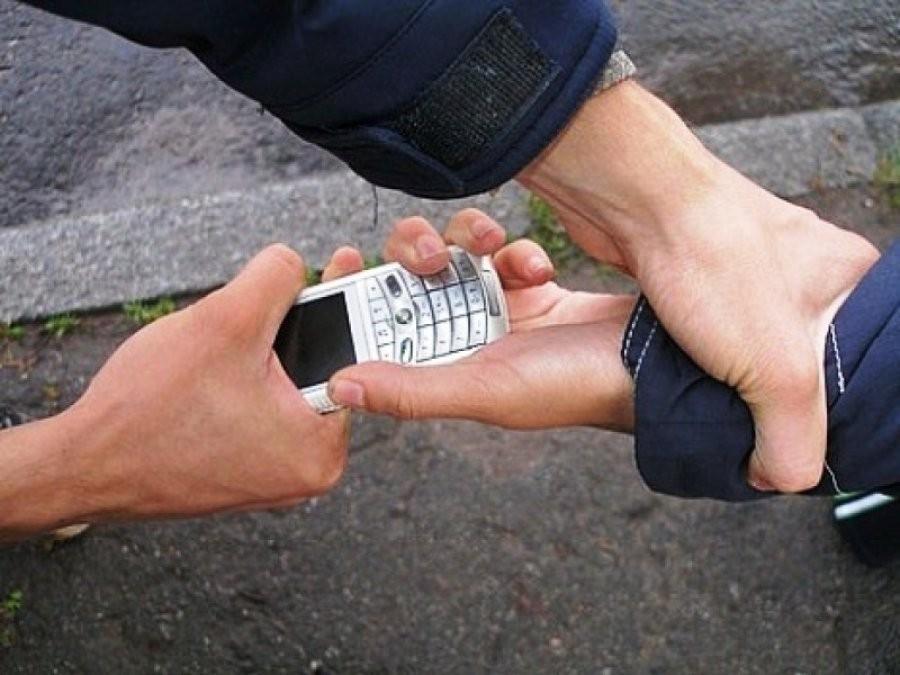 ВПетербурге преступники отобрали у молодых людей мобильные телефоны, угрожая спустить бойцовскую собаку