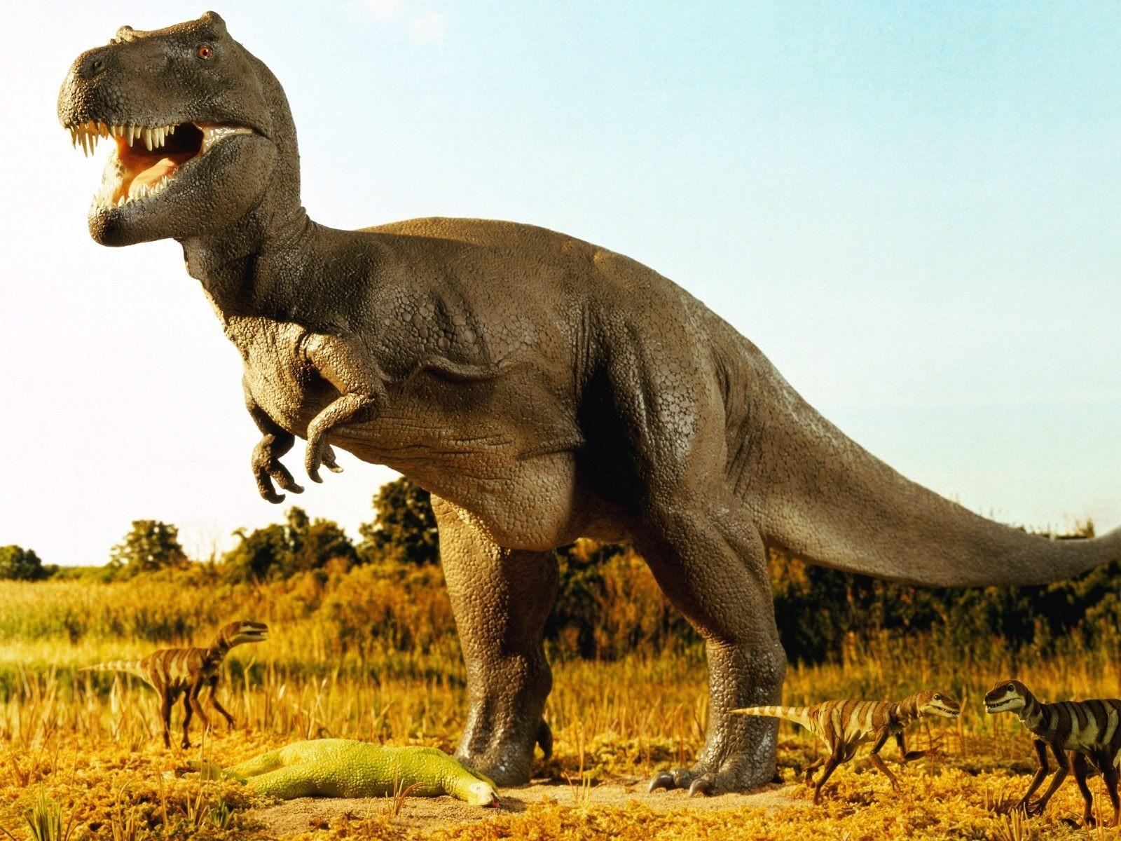 Палеонтолог засомневался вправильности определения пола динозавров