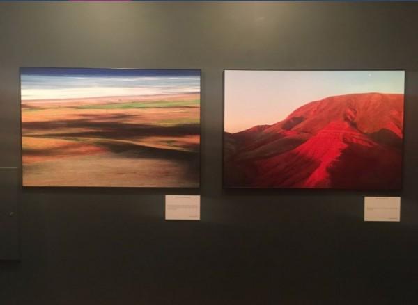 Росфото продемонстрировали шесть фото с выставки