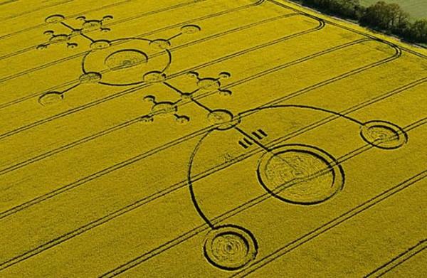Ученый: Круги на полях связаны с инопланетянами