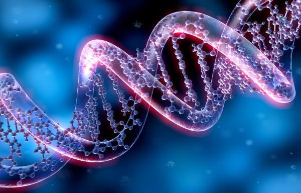 В университете Ньюкасла появятся дети с ДНК трех человек