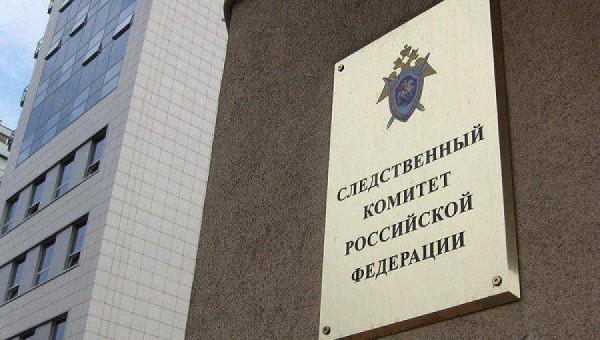 В Ростове СК проверяет факт нападения стаи собак на 12-летнего ребёнка