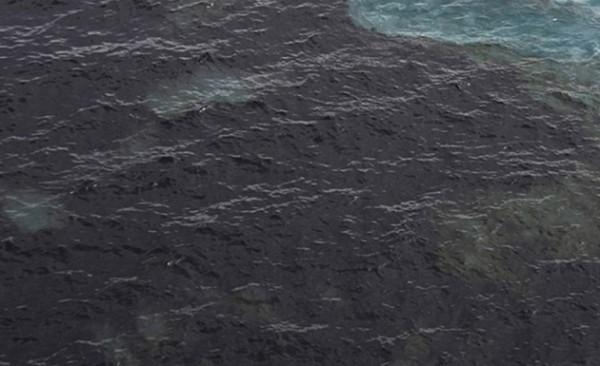 В Подмосковье ищут виновников сброса нефтепродуктов в водоемы