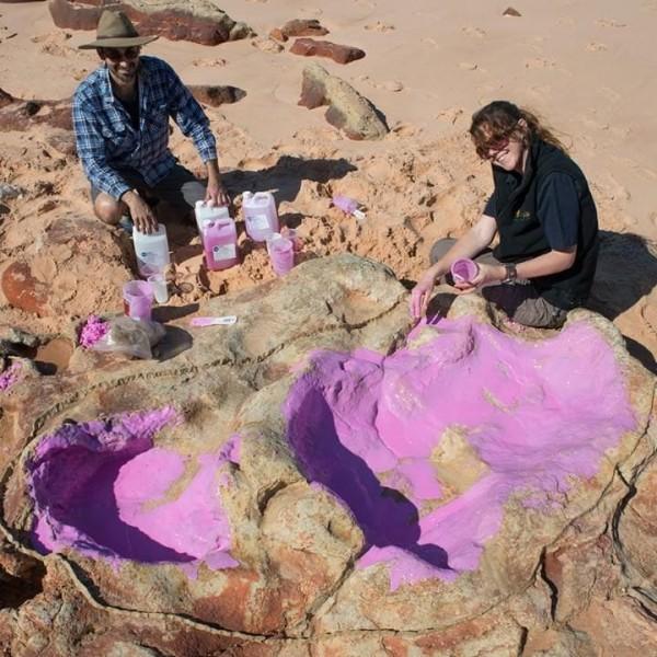 Палеонтологи нашли в Австралии множество следов динозавров