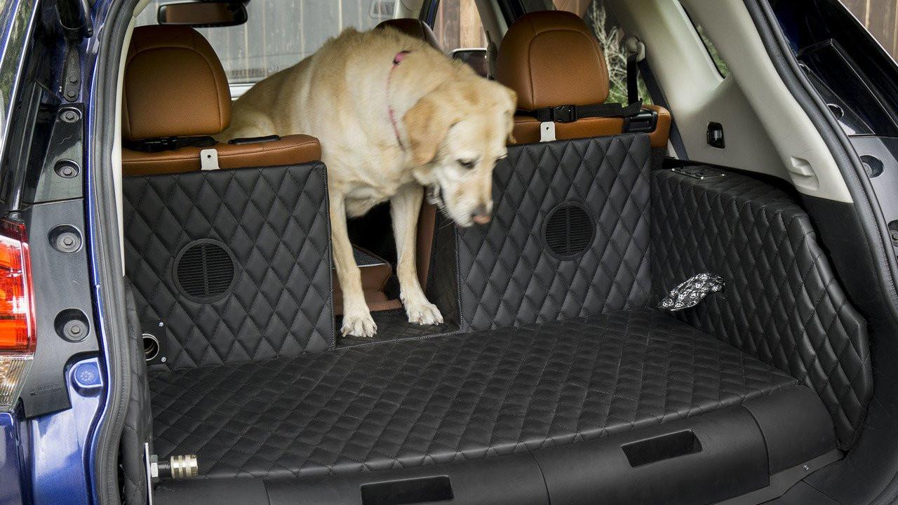 ВНью-Йорке будет представлен концептуальный автомобиль Ниссан Rogue Dogue для собак