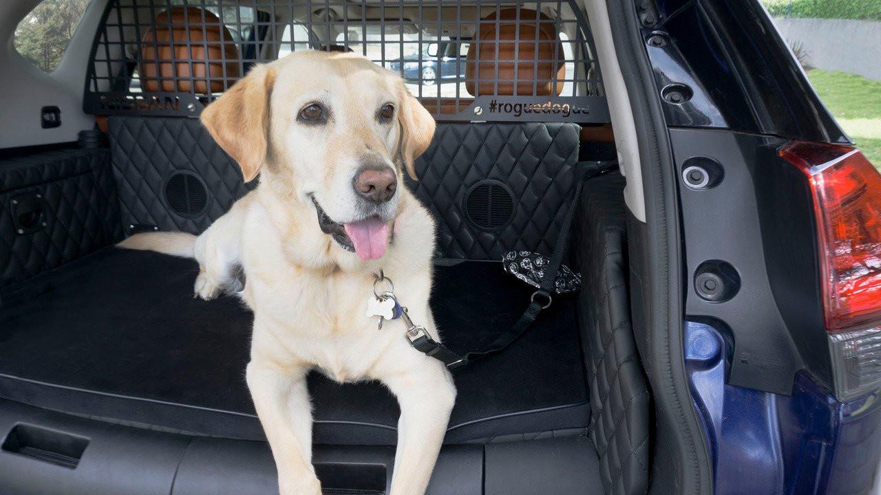 ВНью-Йорке будет показан концептуальный автомобиль Ниссан Rogue Dogue для собак