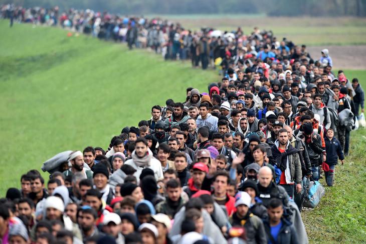 Депутат предложил способ удешевить депортацию мигрантов из РФ