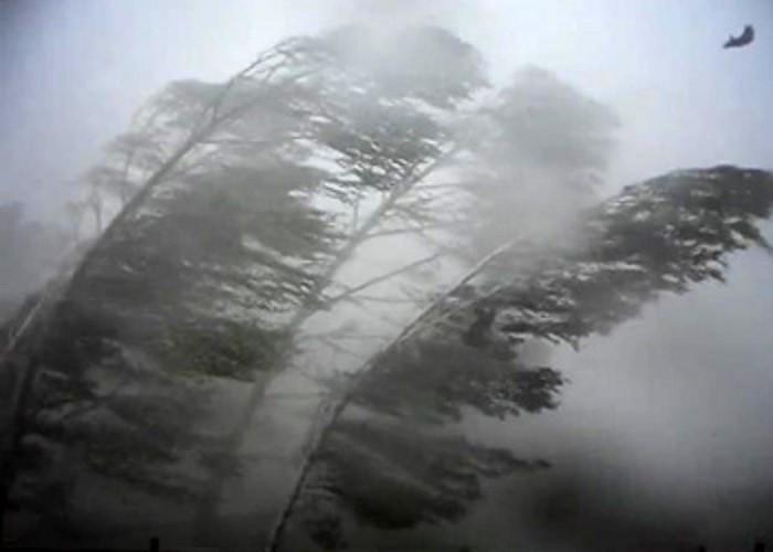 ВТатарстане предполагается штормовой ветер идождь