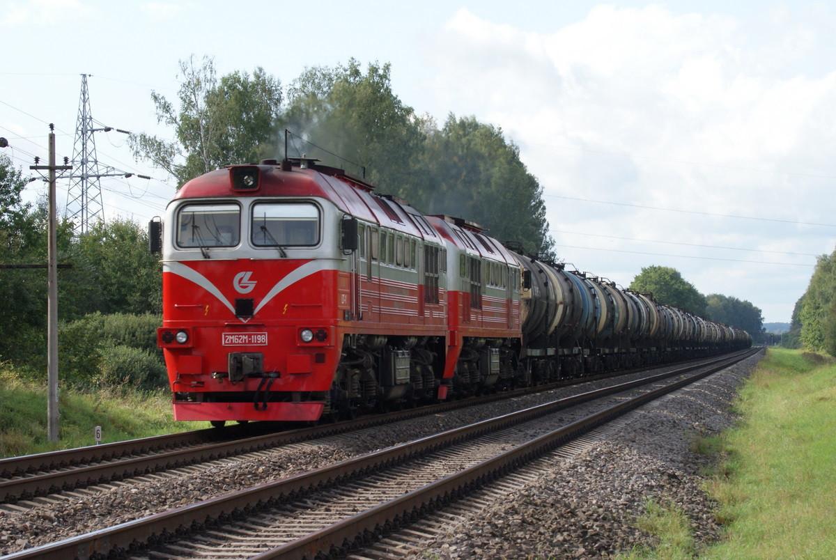 ВСвердловской области грузовой поезд задавил 3-х летнего ребенка