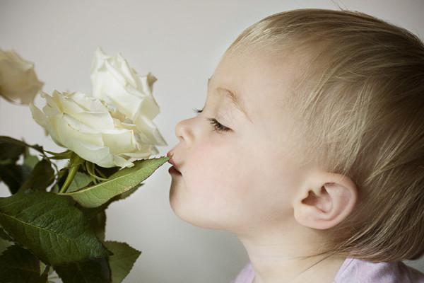 Ученые назвали язык запахов самым ходовым вмире