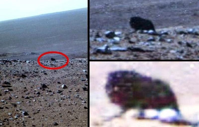 Размещено  видео таинственного  НЛО, пролетающего мимо Луны