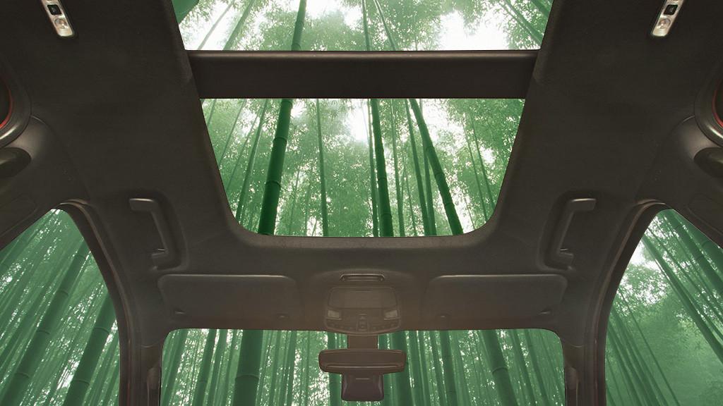 Форд будет строить свои автомобили избамбука