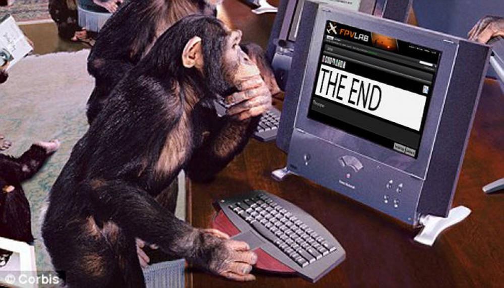 Ученые огласили самых умных животных