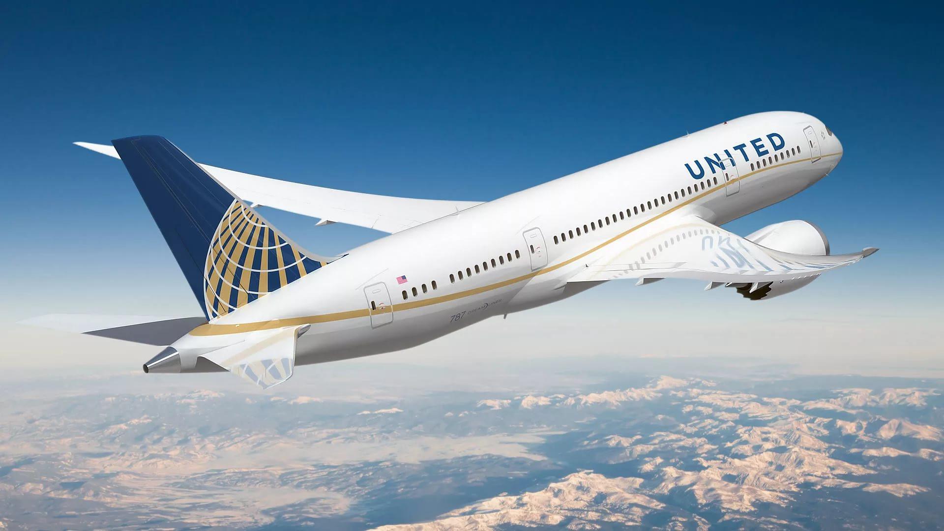 Наборту скандальной авиакомпании United Airlines вовремя перелета погиб гигантский кролик