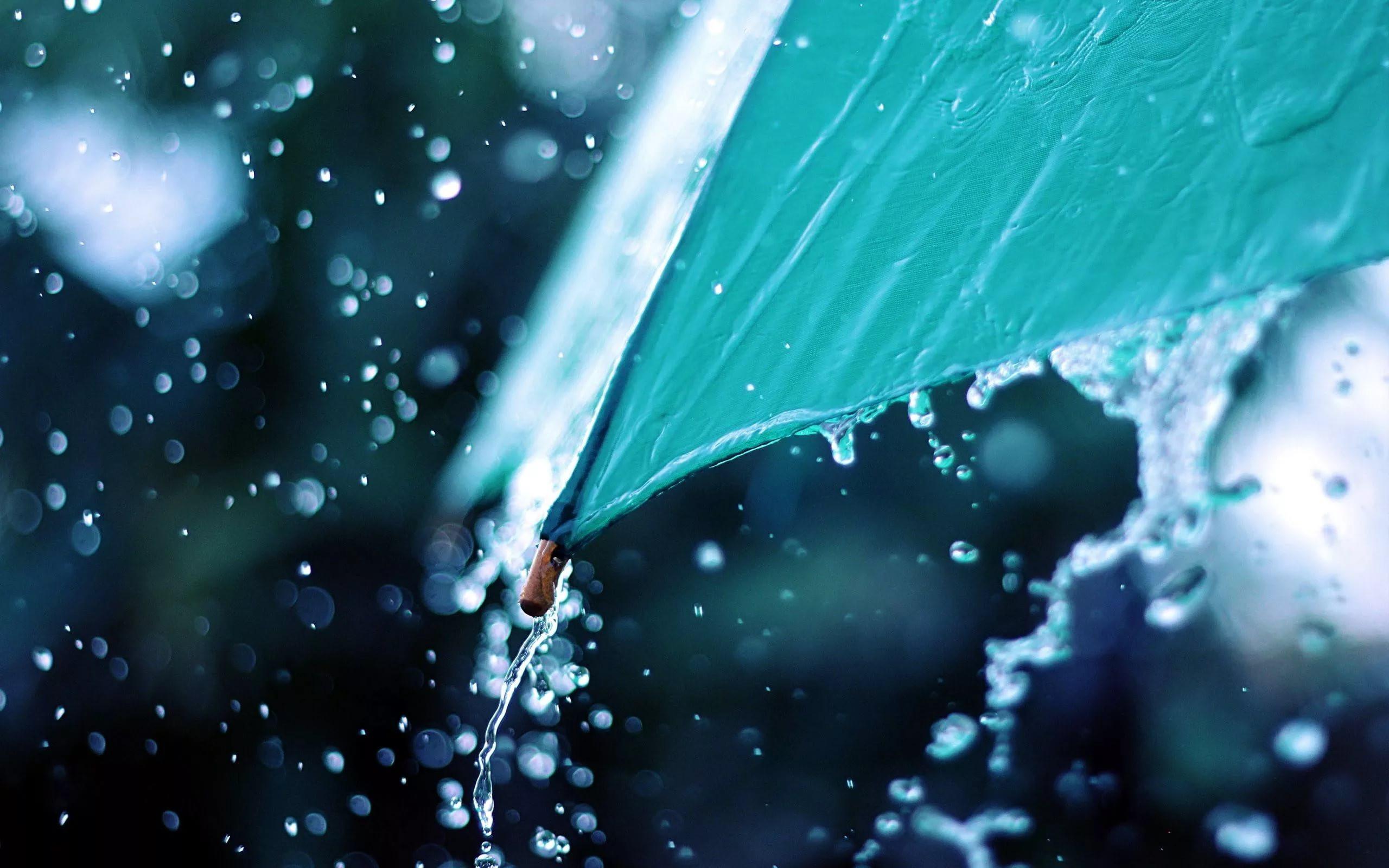 Синоптики: Намайские праздники вКрасноярске предполагается дождь ирезкое похолодание