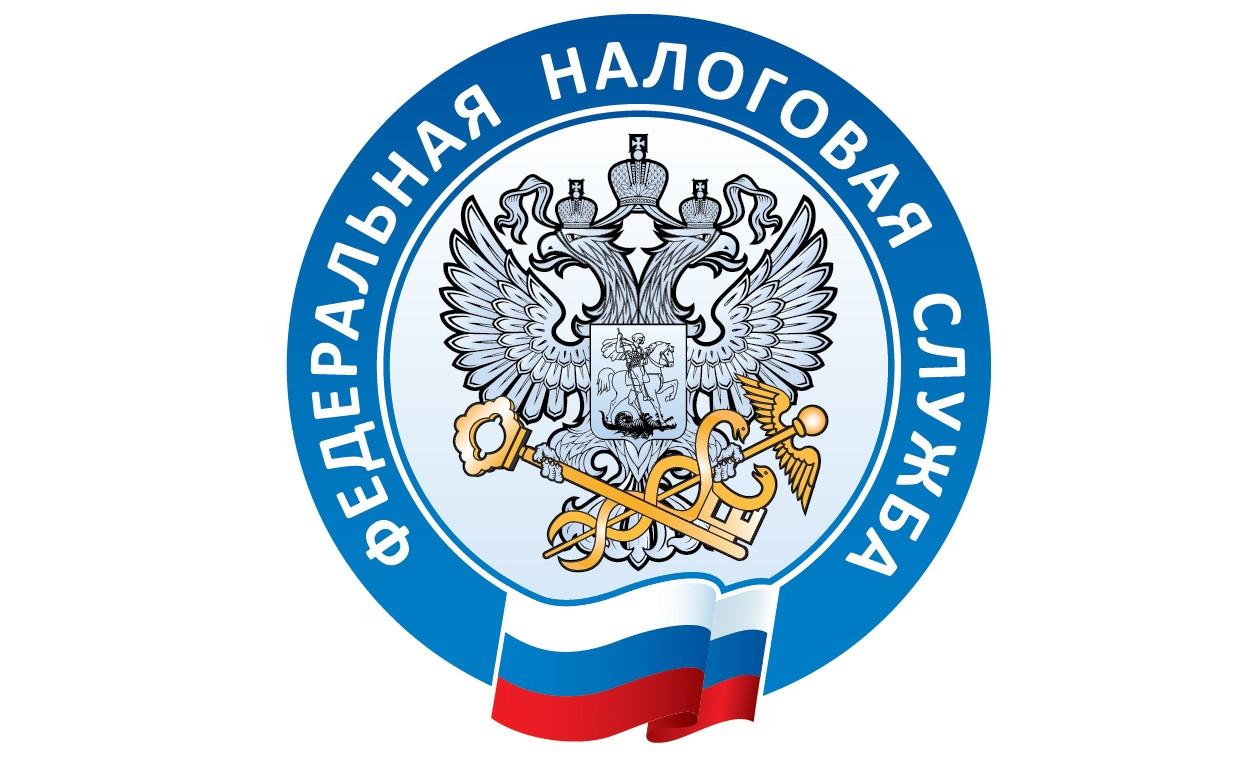 Фнс россии утвердила новый год
