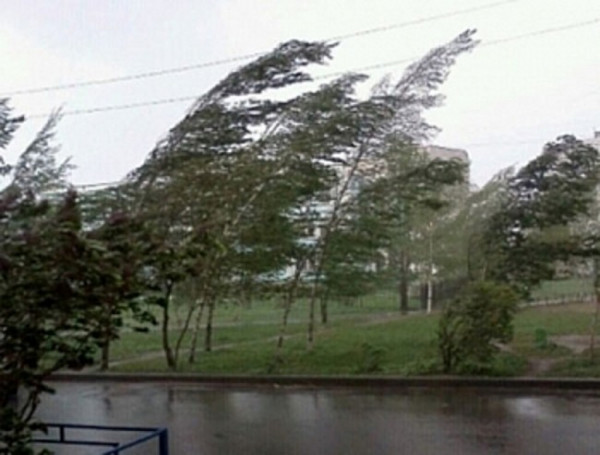 Из-за ураганного ветра объявлен режим ЧС во Владикавказе