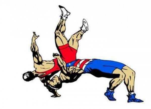 Призерами соревнования по греко-римской борьбе стали представители Ростова