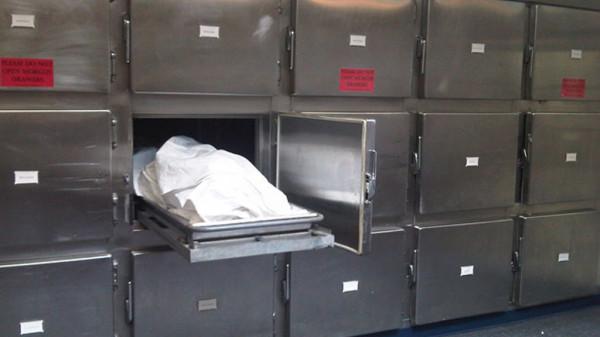 В Ярославле на территории Тверицкого бора найден труп пропавшего без вести