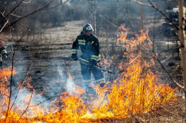 Власть возместит пострадавшим от пожара регионам Сибири 143 миллиона рублей