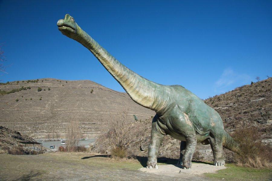 Ученые изСанкт-Петербурга отыскали новый род динозавров