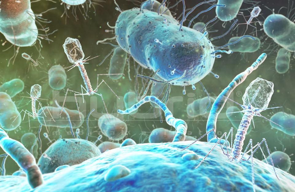 Древнейшие вирусы проснутся в итоге глобального потепления— Ученые