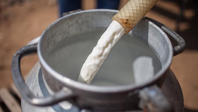 «Горячая линия» по задачам профилактики клещевых инфекций открыта наДону